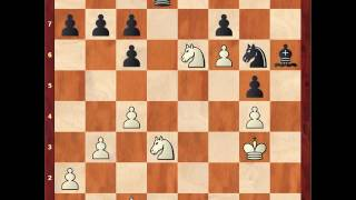 Fritz 15 vs Play Magnus Age 25 (C67 Ruy Lopez SCF Engine Tournament 2016 (1))  1-0