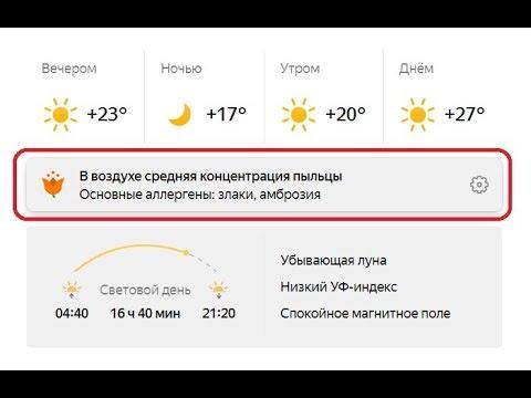 Новшество в Яндекс.Погоде: Информация по аллергенным зонам для аллергиков !