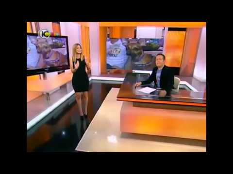 """אירוע השקה לערוץ DogTV בישראל. """"גמר תחרות הכלב הבא של ישראל"""" בהפקת קבוצת CPR"""