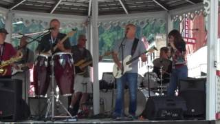 The Thrill is Gone-Dr. Phil and the Enablers at the Wallace Blues Fest. 2016
