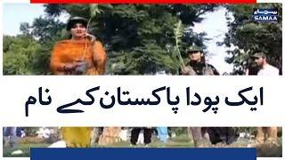 Download Video Ek Poda Pakistan kay Naam | SAMAA TV | 14 AUGUST 2018 MP3 3GP MP4