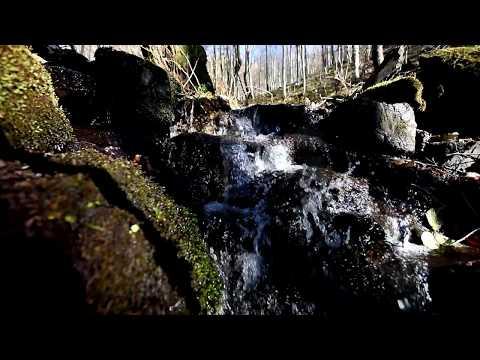 Small Mountain Stream  w/ Bird Sounds - Deep Sleep, Meditation, Relaxing Full HD Video