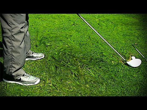 Golf Instruction to Stand Correct Distance from the Ball