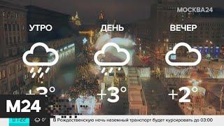 """Смотреть видео """"Утро"""": небольшой дождь ожидается в Москве 31 декабря - Москва 24 онлайн"""