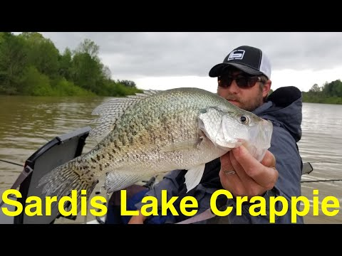 Crappie Fishing Mississippi's Sardis Lake