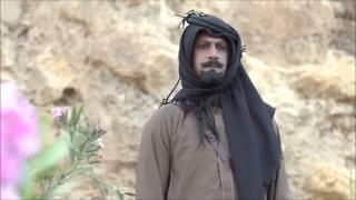 شيلة يا اهل الهوى والغرام / كمات وإداء طير شلوى / 2015