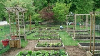 Backyard Organic Gardening Ideas - How My Dad Transformed My Mom's Garden (part 1)