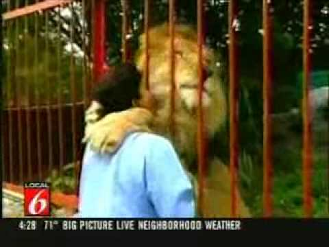 Lion hugs and kisses woman after rescue!