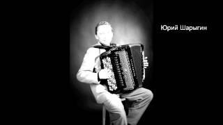 Юрий Шарыгин - Берегись Автомобиля