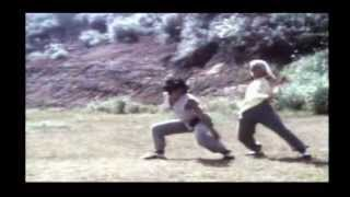 El Secreto De Shaolín Kung Fu (Li Yi-Min)