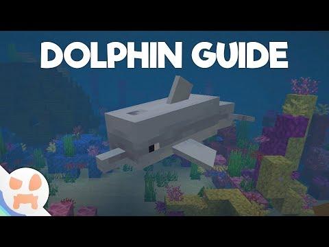 Update Aquatic DOLPHIN GUIDE!