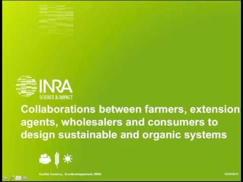 Collaboration between farmers, extension agents, wholesalers and consumers