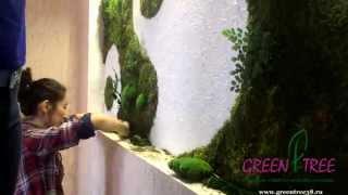 Фитостена, Вертикальное озеленение стен стабилизированным мхом от GREEN TREE(, 2015-04-13T16:13:52.000Z)