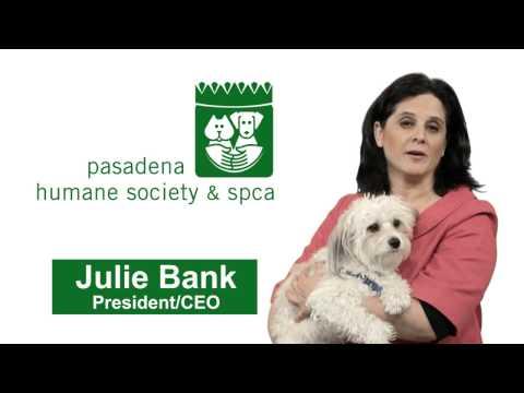 Pasadena Humane is here to help