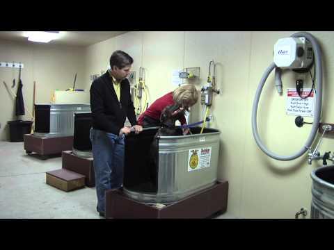 Self Serve Dog Wash @ Douglas Ranch Supply