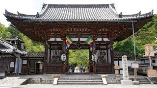 近江八景「石山の秋月」としても名高い寺院で、全国でも類を見ない巨大...