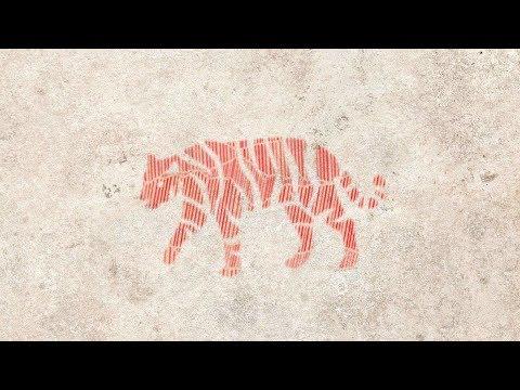 Подсказки на 2019 для тех, у кого в карте  рождения есть Тигр
