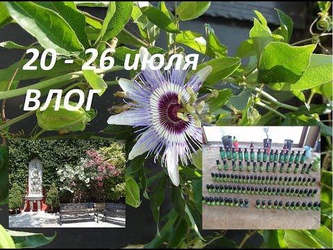 Фурацилина таблетки для наружного употребления 0,02 г