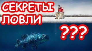 Зимняя рыбалка для начинающих. Советы и секреты ловли