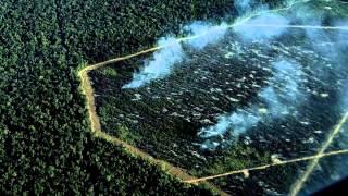 S.O.S. AMAZÔNIA / STOP BELO MONTE (fr): une main verte, une main rouge, peuples levez vous !