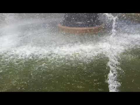 Fountains Of Hamilton