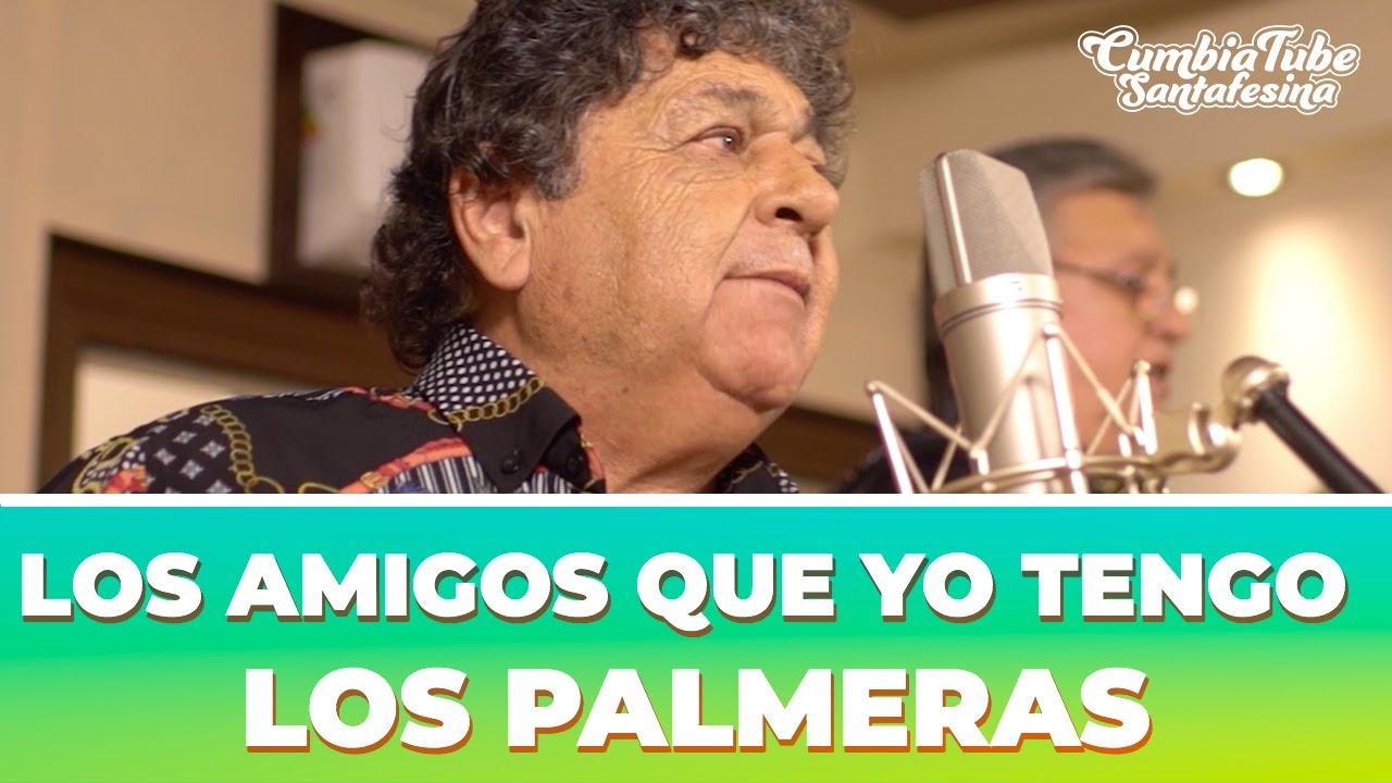 Los Palmeras - Los Amigos Que Yo Tengo   Cumbia Tube Santafesina