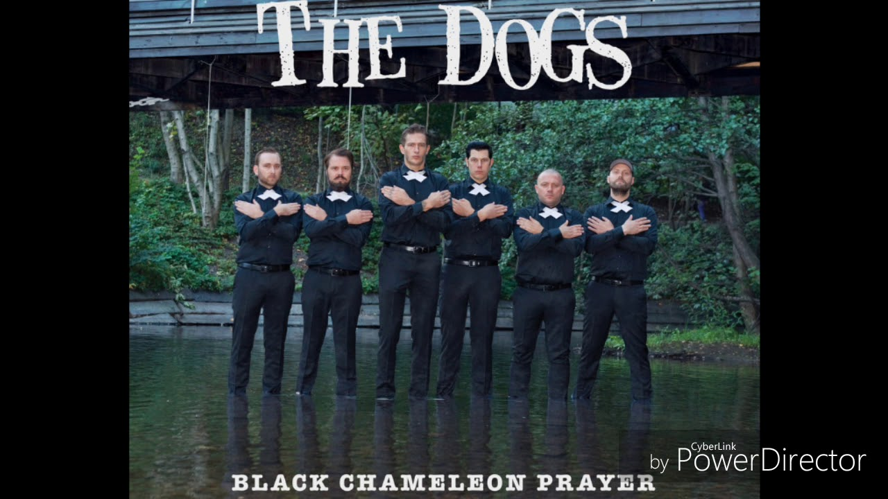 The Dogs - Those Blackouts