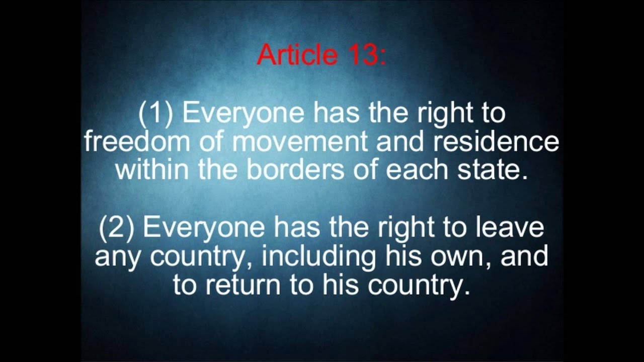 article 13 - photo #16