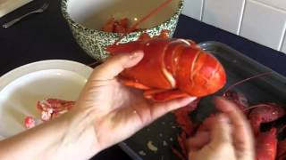 How to Get the Meat out of a Boiled Lobster