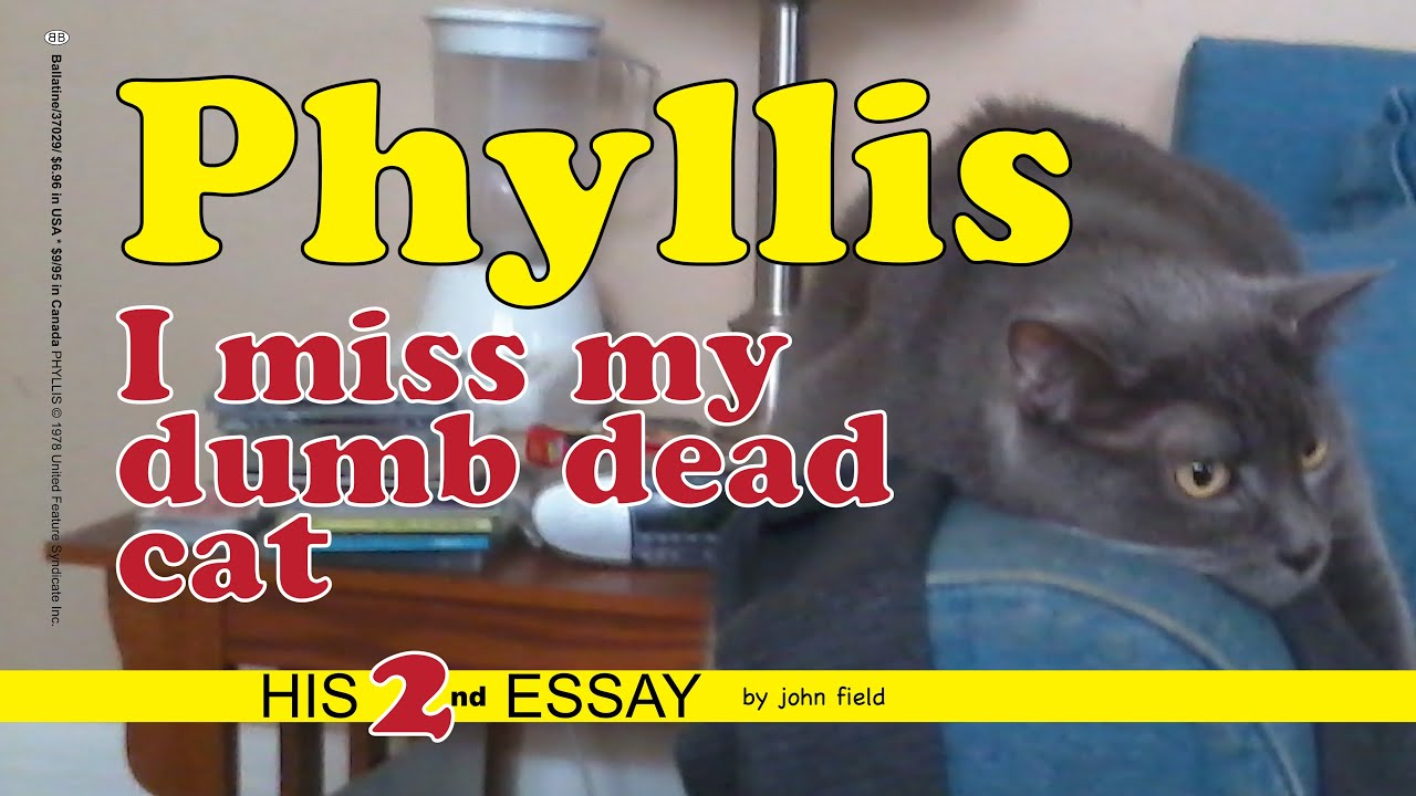 American Dad Phyllis Hentai a guy's video essay about his dead cat turns into a