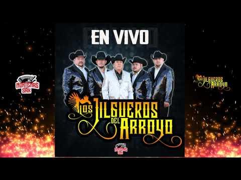 Los Jilgueros Del Arroyo -Disco Completo [En Vivo 2019]