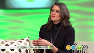 A szakértő válaszol: Hogyan bízzunk meg a párunkban?-2015.11.09.-tv2.hu/fem3cafe