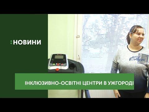 Інклюзивні центри Ужгорода відвідали працівники обласного товариства осіб з інвалідністю