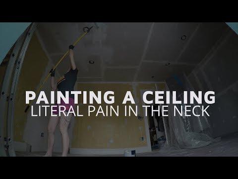 Let's Paint That Ceiling!