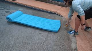Rat Terrier Chihuahua Mix Sammy Jumps On Pool Float & Surfs In Swimming Pool For Dog Toy