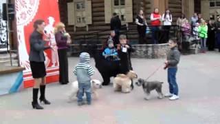 Конкурс ребенок и собака .03.05.2015 г.Витебск.