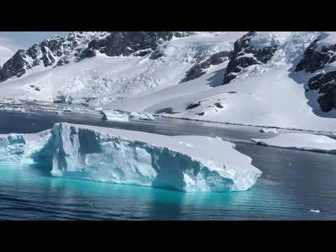 Antarctica video 17th Feb 2019