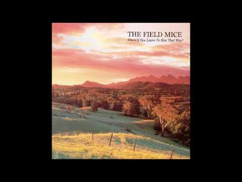 the field mice - where'd you learn to kiss that way? (1998)