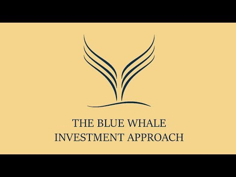 The Blue Whale Investment Approach