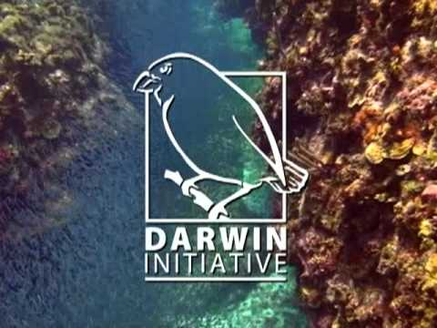Cayman Islands Marine Park Review Darwin Initiative