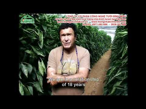 Công nghệ nhà màng, nhà kính nông nghiệp công nghệ cao politiv Israel