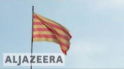 France's Catalans want more regional autonomy