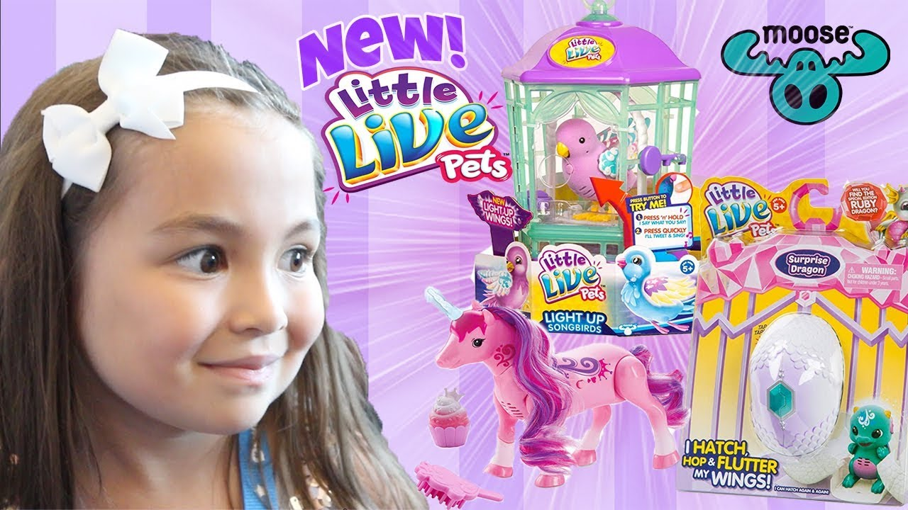New Little Live Pets By Moose Toys Surprise Dragon Dancing Unicorn Light Up Bird Youtube