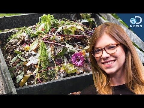 How To Start Your Own Compost