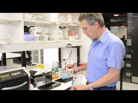 Promega Maxwell DNA/RNA Extraction LEV SEV Hardware