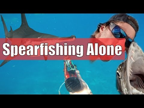 Hammerhead Shark! I Eat A HATED & SCARY Fish While Spearfishing ALONE | Catch And Cook