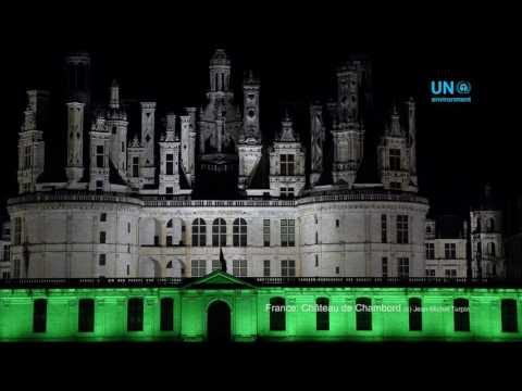 The world goes green to celebrate WED