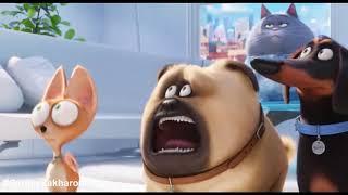 Приколы из мультфильма - Тайная жизнь домашних животных 2016 (прикол 4)
