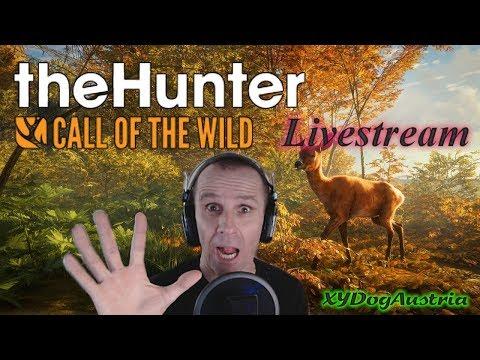 the-hunter-**wir-sind-back-internet-war-down**-livestream-gameplay-+-facecam-1080p30