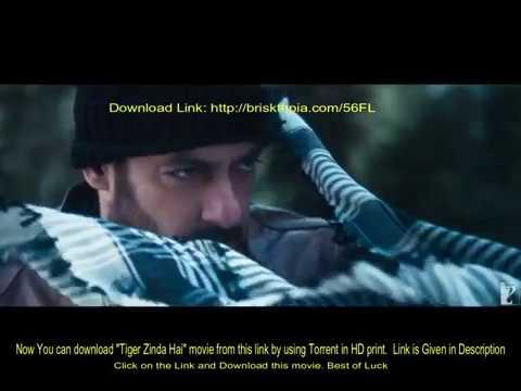 Tiger Zinda Hai HD   Full Movie Link   Torrent  Salman Khan   Katrina Kaif